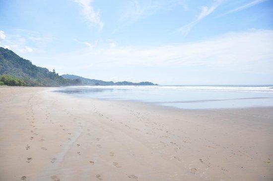Hotel Domilocos: Beach