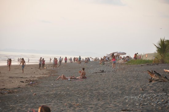 Hotel Domilocos: Beach before Sunset