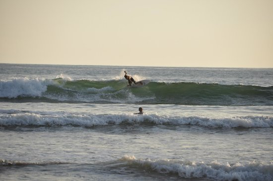 Hotel Domilocos: Surf