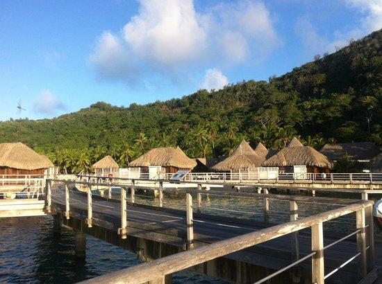 Sofitel Bora Bora Marara Beach Resort: les bungalows pilotis