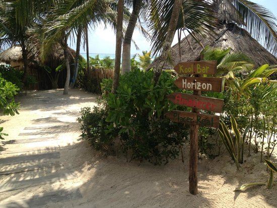 My Way Boutique Hotel: Path leading to paradise...