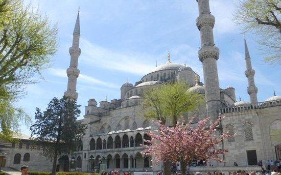 Mezquita Azul: Blue Mosque