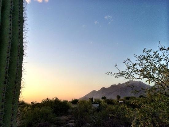 Westin La Paloma Resort and Spa: sunset!