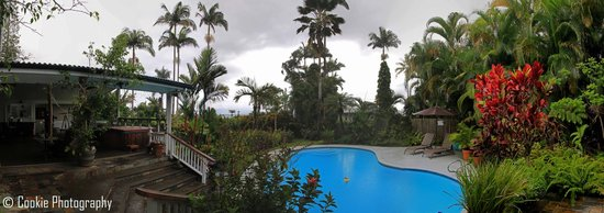 Orchid Tree Bed and Breakfast: Panoramic view of pool, garden and lanai