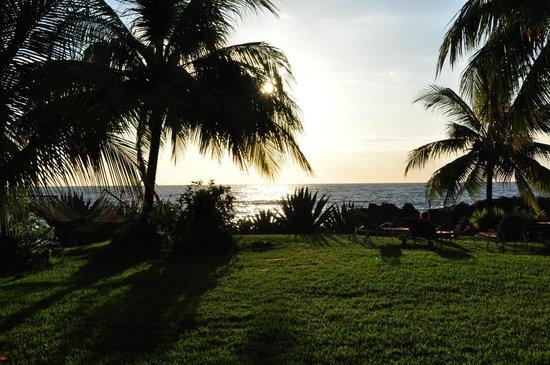 Hotel Amor de Mar : View of ocean