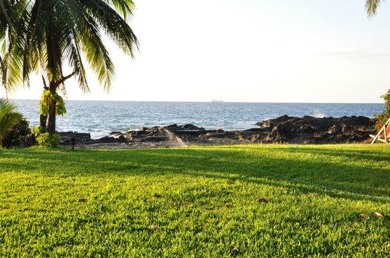 Hotel Amor de Mar: Grounds