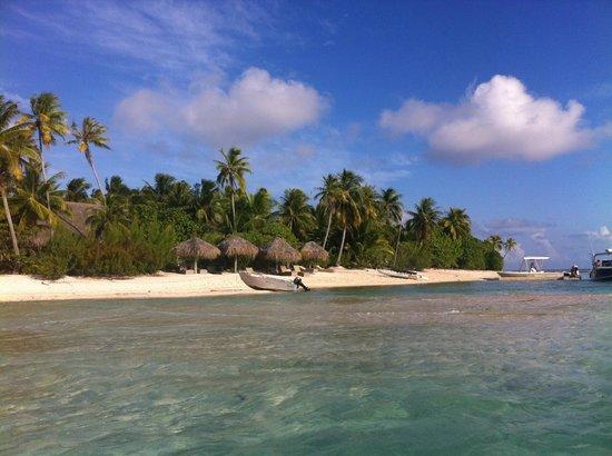 Tikehau Ninamu Resort: Plage du Ninamu