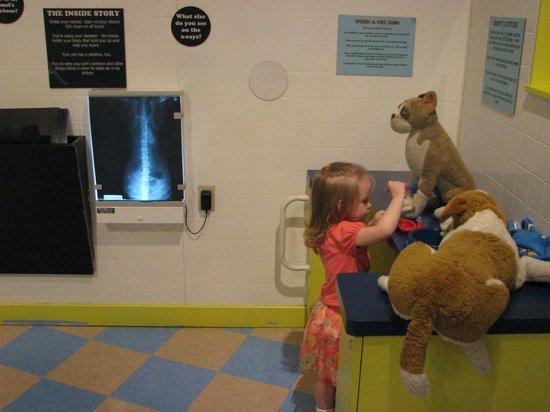 Cincinnati Museum Center at Union Terminal: Dr. Ella in the Children's Museum