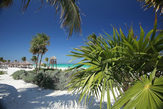 Secrets Maroma Beach Riviera Cancun: Gorgeous Views