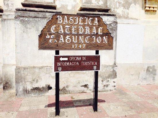 Basilica Catedral de la Asuncion: Historia