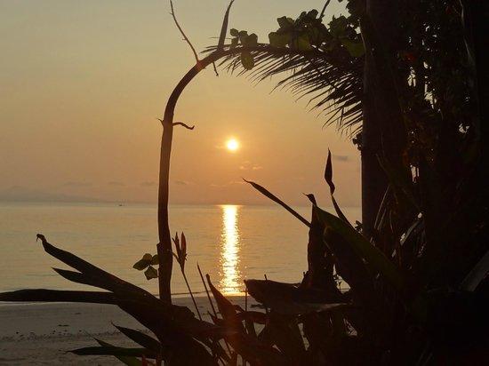 Phi Phi Relax Beach Resort : Рассвет