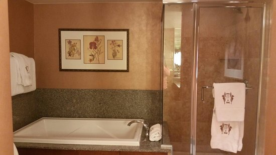The Brown Palace Hotel and Spa, Autograph Collection : Bathroom