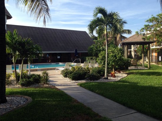 Dolphin Key Resort : Poolanlage und Tiki-Bar