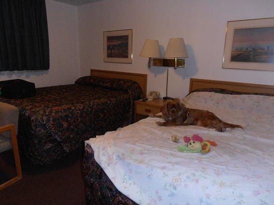 ذا كرو بيك لودج: Double beds