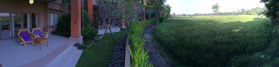 Tegal Sari: Our super deluxe room overlooks the paddy field.