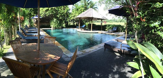 Tegal Sari: While the pool is small, it's nice.