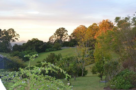 Spicers Clovelly Estate : Sunset view from lawn of main building