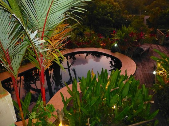 Nanga Damai Homestay : Evening looking down at the welcoming pool .