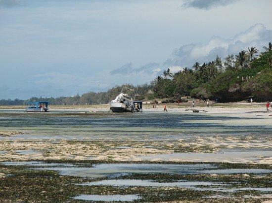 Diani Reef Beach Resort & Spa: отлив