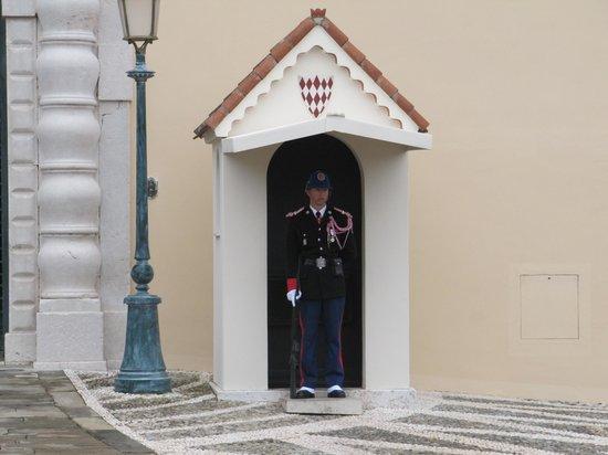 The Palace Guards : площадь