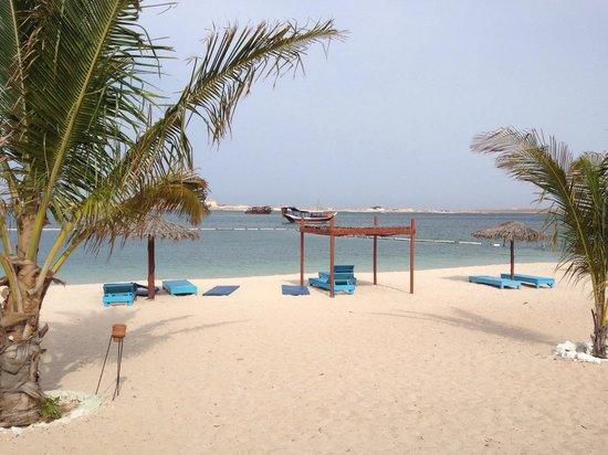 The Turtle Beach Resort (Ras al Hadd) : The beach