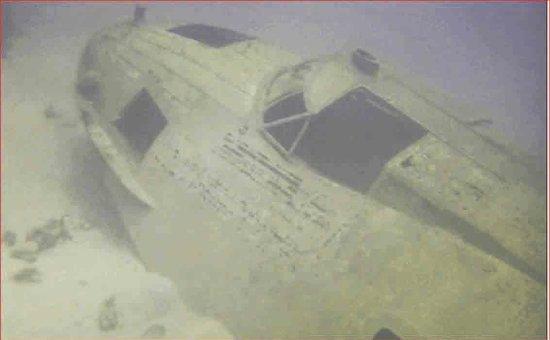 Catalina five0 tiger shark 1990 full vintage movie 2