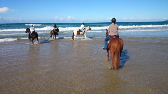 Equathon Horse Riding Tours - Day Tours: my friends and i taking a moment :)