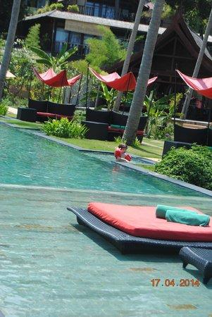 Kupu Kupu Phangan Beach Villas and Spa by l'Occitane : La piscine