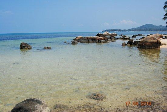 Kupu Kupu Phangan Beach Villas and Spa by l'Occitane: La Plage