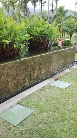 The Old Phuket : The gardens of the main lobby (decor)