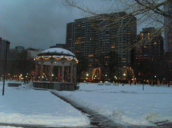 Four Seasons Hotel Boston: Boston Common opposite the hotel