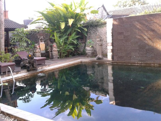 Uncleaned pool picture of puri garden hotel for Pool garden restaurant