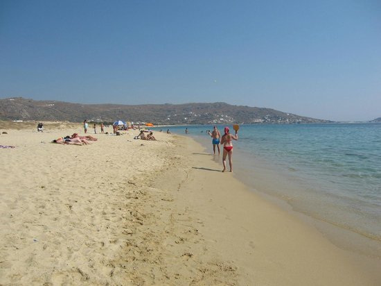 Studios Glaronisi 2: Plaka Beach Naxos