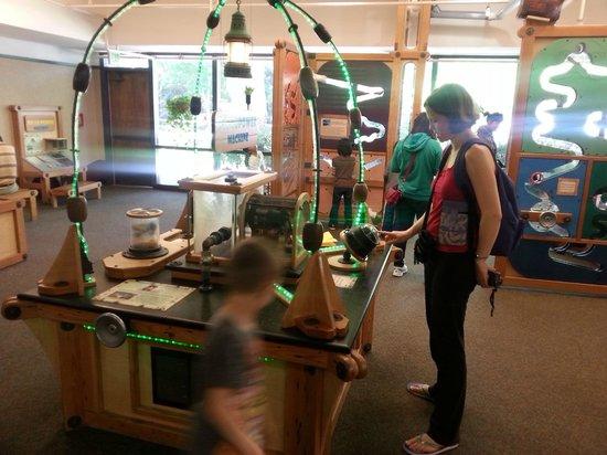 Junior Museum & Zoo: Palo Alto Zoo - exhibition area
