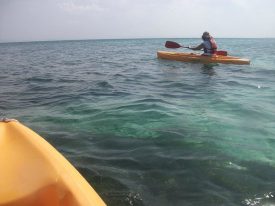 Luxury Bahia Principe Cayo Levantado Don Pablo Collection: Single sit on kayaks at calm beach