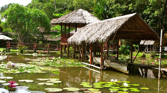 Sabah State Museum: close look at the pond