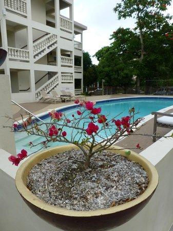Sandy Haven Resort: Pool