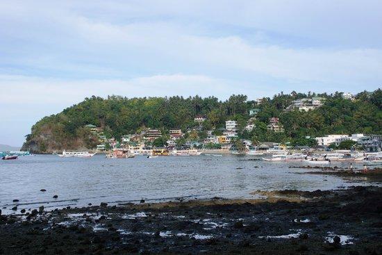 Blue Ribbon Dive Resort: Sabang