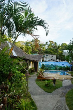 Blue Ribbon Dive Resort: Garden and swimming pool