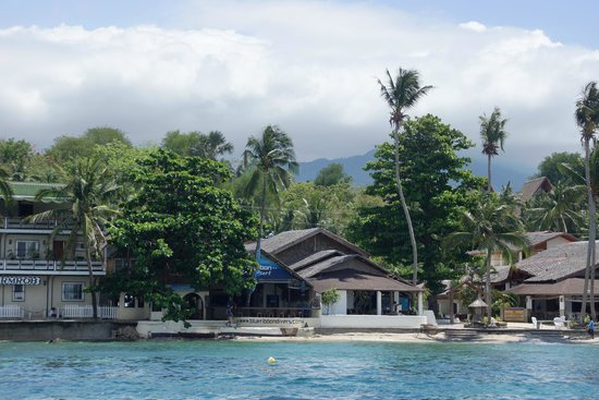 Blue Ribbon Dive Resort: Blue ribbon resort 2