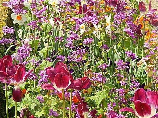 Herrenhäuser Gärten: Beleza colorida.