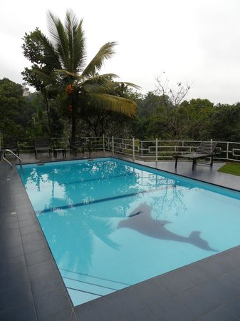 Blue Haven Guest House: Pool
