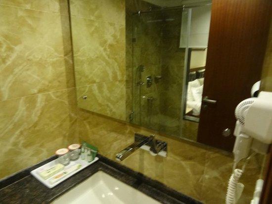 Hotel Regent Grand: Bathroom
