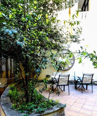 Hotel Kennedy Nova: Internal Garden