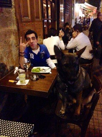 Dog Friendly Restaurants In Beirut