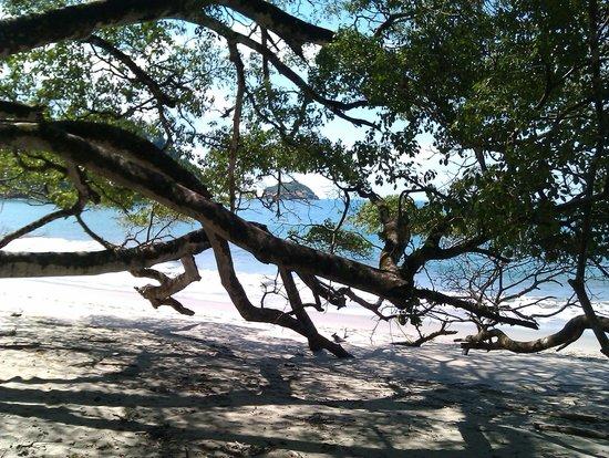 Hotel Verde Mar: Strand im Nationalpark