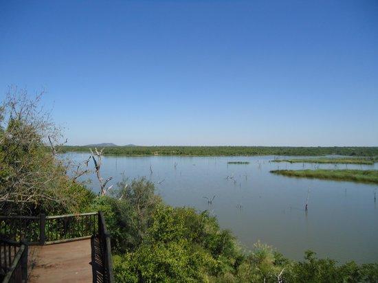 Letaba Rest Camp: Mopani