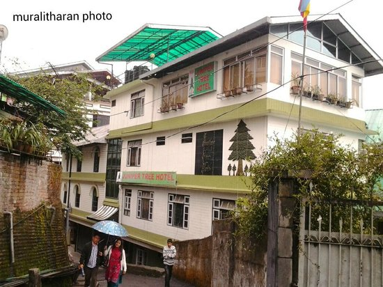 JUniper tree hotel full view-Muralitharan, srirangam