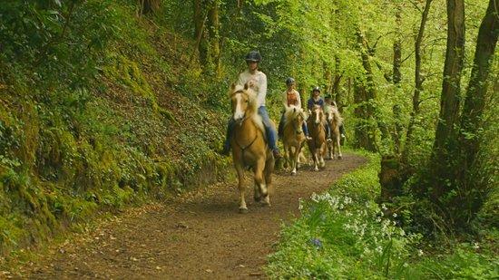 The Dunloe: Horse Riding