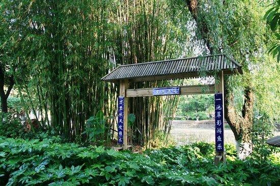 Green Lake (Cui Hu): green lake1